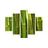 Bambuszerdő vászonkép