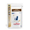 Royal Canin Diet Royal Canin Gastro Intestinal Feline 12*100g