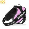 Julius-K9 Julius K-9 IDC Powerhám, felirattal, méret 2 pink