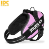 Julius-K9 Julius K-9 IDC Powerhám, felirattal, Mini-Mini pink