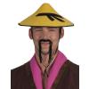 Wong férfi kínai kalap