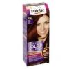 Schwarzkopf Palette Intensive Color Creme hajfesték Sötét Cseresznye RN4