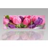 Byhome Digital Art vászonkép   1211-S Tulipe Colore CUBE