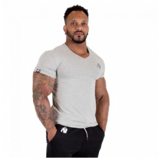 ESSENTIAL V-NECK T-SHIRT (GRAY) [XXL]