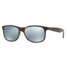 Ray-Ban RB4202 710/Y4 ANDY napszemüveg