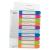 Leitz Regiszter, A4 Maxi, 1-10, nyomtatható, LEITZ