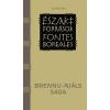Corvina Kiadó - BRENNU-NJÁLS SAGA - ÉSZAKI FORRÁSOK -FONTES BOREALES