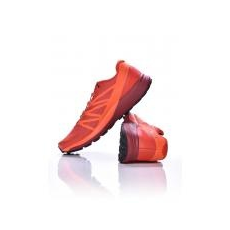 Salomon Sense Ride [méret: 43,3]