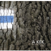 - A Kék Túranapló kezdő kalandoroknak 2008-2010