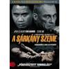 A Sárkány szeme (DVD)