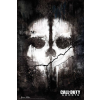 Activision Blizzard Call of Duty: Ghosts (PC - digitális kulcs)