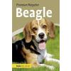 Annette Schmitt - Beagle – Annette Schmitt