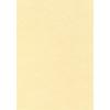 APLI Előnyomott papír, A4, 95 g, pergamen hatású, APLI, pezsgő