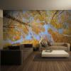 Artgeist Fotótapéta - Őszi fák