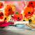 Artgeist XXL Fotótapéta - Velvet poppies