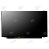 AU Optronics B156XTN07.1