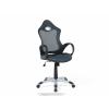 Beliani Szürke-zöld irodai szék - iChair