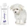 Biogance White Snow Shampoo 1 l