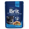 Brit Premium Cat Chicken Chunks for Kitten alutasakos 24 x 100 g