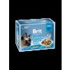 Brit Premium Cat tasakos Delicate Fillets in Gravy Dinner Plate 4x85g
