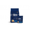 Brit Premium Kitten Chicken 0 8 kg