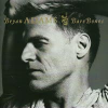 Bryan Adams Bare Bones (CD)