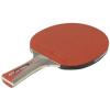 Cornilleau Sport 200 ping pong ütő, szabadidős pingpongozáshoz