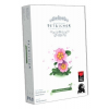 Delta Vision Petrichor: Virágok kiegészítő