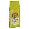 Dog Chow 14kg Purina Dog Chow Adult csirke száraz kutyatáp