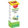 Dr. Herz Eukaliptusz illóolaj, 10 ml