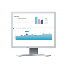 Eizo FlexScan S1934H-GY monitor