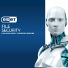 ESET File Security for Microsoft Windows Server 4 szerver 1 év HUN online vírusirtó szoftver