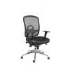 Fõnöki szék, szövetborítás,fejtámla nélkül, hálós háttámla, Oklahoma, fekete