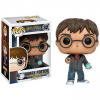 Funko Harry Potter - Harry w / Prophecy