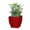 G21 önöntöző kaspó Cube mini 13.5cm, piros