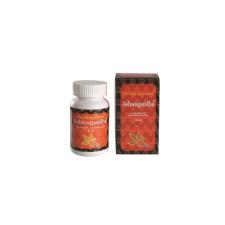 Garuda Garuda ayurveda ashwagandha kapszula vegetáriánus 60 db táplálékkiegészítő
