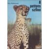 Gondolat A pettyes szfinx