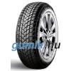 GT Radial Champiro Winterpro 2 ( 195/65 R15 91T )