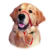 HALTI húzás elleni szájszíj piros 3-as