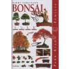 Harry Tomlinson BONSAI