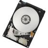 HGST ENDURASTAR J4K320 250GB