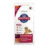 Hill's Canine Adult Large Breed Lamb & Rice 2x12kg