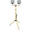 Home állványos reflektor FLS 2/500