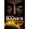 Iain M. Banks KÖZELKÉP