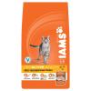 IAMS Cat Adult Chicken (10kg)
