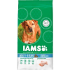 IAMS ProActive Health Dog Adult Large Csirkés 12kg
