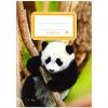 ICO Süni leckefüzet - A5-ös, panda