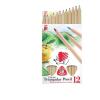 """ICO Színes ceruza készlet, háromszögletű, vastag, natúr,  """"Süni"""", 12 különböző szín"""