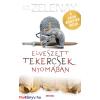 K.T. Zelenay K. T. Zelenay: Elveszett tekercsek nyomában