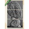 Képáruház.hu Kövek harmóniája(125x70 cm, L01 Többrészes Vászonkép)